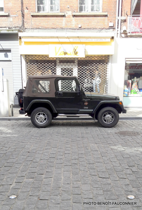 Jeep Wrangler Sahara 4.0